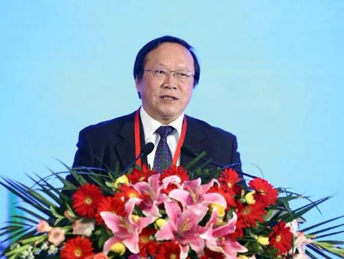唐元:大规模发展可再生能源时机将在5年内成熟,风光氢结合前景广阔